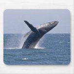 Pacific Humpback Whale... Mousepads