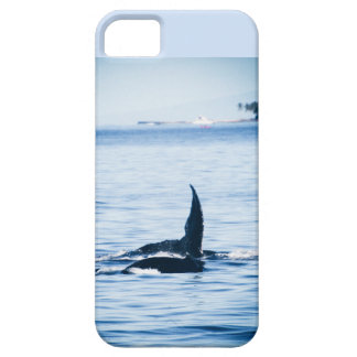 Pacific Humpback Whale Tails iPhone SE/5/5s Case