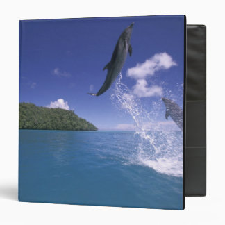 Pacific, Micronesia, Palau, Bottlenose 2 Vinyl Binders