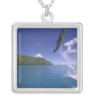 Pacific, Micronesia, Palau, Bottlenose 2 Square Pendant Necklace