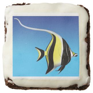Pacific Moorish Idol Aquarium Fish Brownies