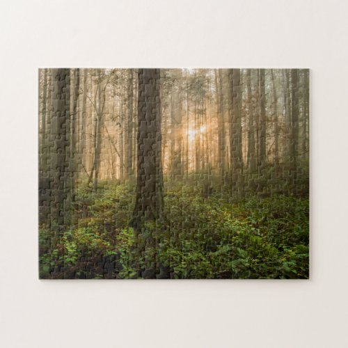 Pacific Northwest Forest  Foggy Morning Jigsaw Puzzle