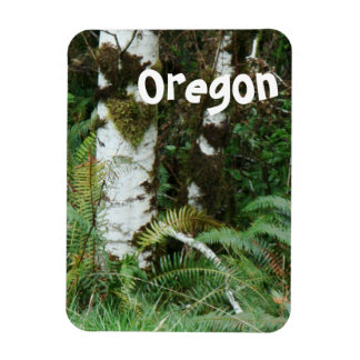 Pacific Northwest Stream Meadow Oregon Magnet