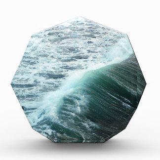 Pacific Ocean Blue Award