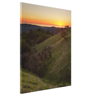 Pacific Ocean from Russian Ridge - canvas Canvas Prints