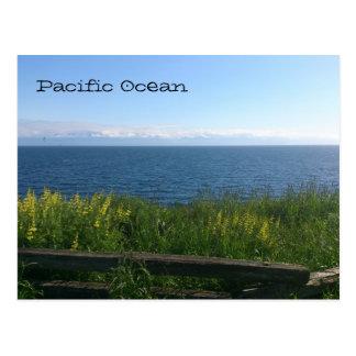 Pacific Ocean Postcard