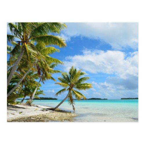 Pacific palm beach postcard