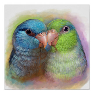 Pacific parrotlet parrot realistic painting poster