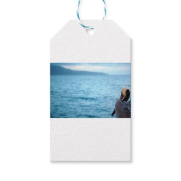Beach Themed pacific pelican gift tags