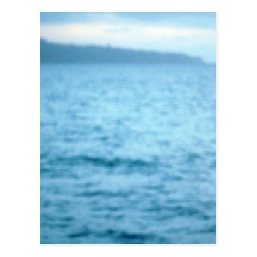 Beach Themed pacific pelican postcard
