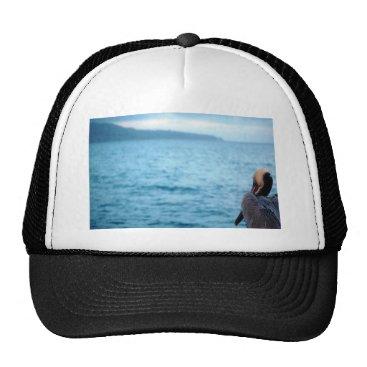 pacific pelican trucker hat