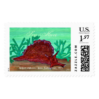 Pacific Sea Hare Stamp