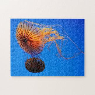 Pacific Sea Nettle (Chrysaora Fuscescens) Jigsaw Puzzle