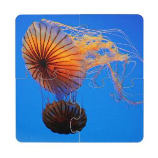 Pacific Sea Nettle (Chrysaora Fuscescens) Puzzle Coaster