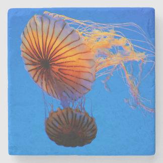 Pacific Sea Nettle (Chrysaora Fuscescens) Stone Coaster