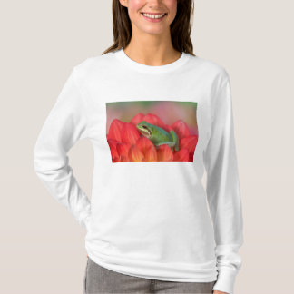 Pacific tree frog on flowers in our garden, 3 T-Shirt