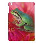 Pacific tree frog on flowers in our garden, 4 iPad mini case