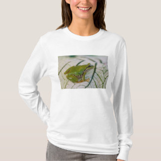 Pacific tree frog on flowers in our garden, T-Shirt