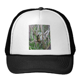 Pacific Treefrog or Chorus Frog Trucker Hat