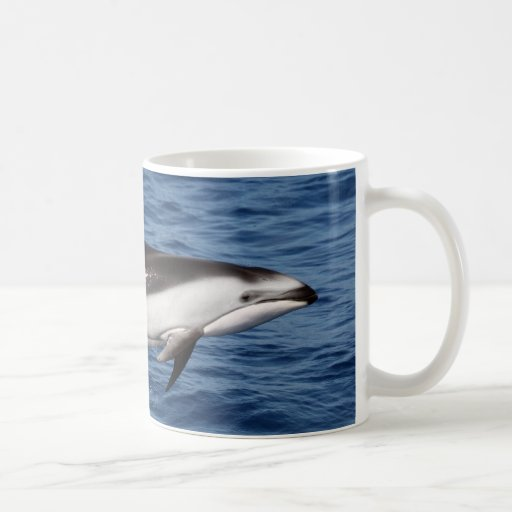 Pacific White Sided Dolphin 2 Classic White Coffee Mug
