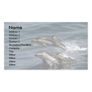 Pacific white-sided dolphin Double-Sided standard business cards (Pack of 100)