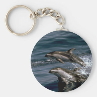 Pacific white-sided dolphin key chains