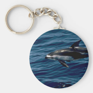 Pacific white-sided dolphin key chain