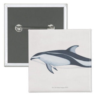 Pacific White-Sided Dolphin Pinback Button