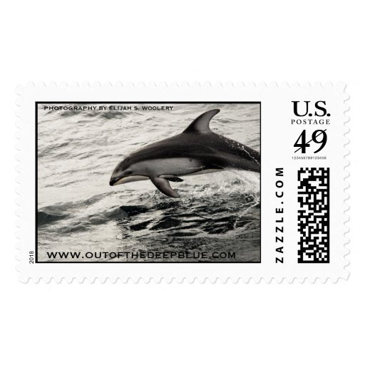Pacific White Sided Dolphin Postage