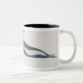 Pacific White-Sided Dolphin Two-Tone Coffee Mug