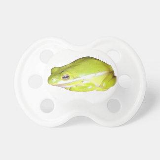 Pacificador americano verde de la rana arbórea chupetes