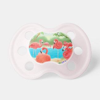 Pacificador rosado bonito del bebé de los pájaros chupetes de bebe