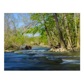 Pacífico en el río postal