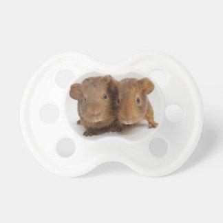 Pacifier - Guinea Pigs Babies