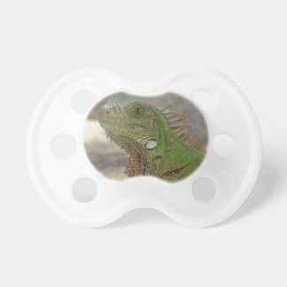 Pacifier QPC Template - Customized BooginHead Pacifier