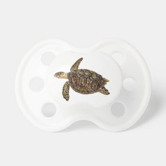 Pacifier turtle sea turtle