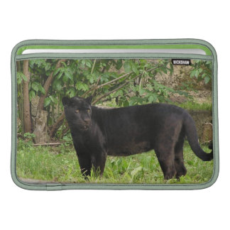 "Pacing Panther 11"" MacBook Sleeve"