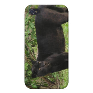 Pacing Panther iPhone 4 Case