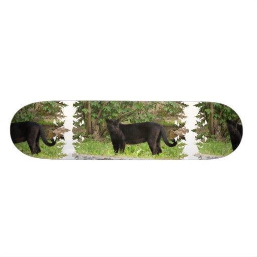 Pacing Panther Skateboard