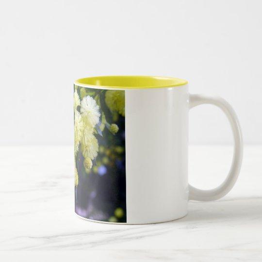 Pack Acacia - Mimosa Two-Tone Coffee Mug