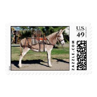 Pack Donkey/Burro Stamps