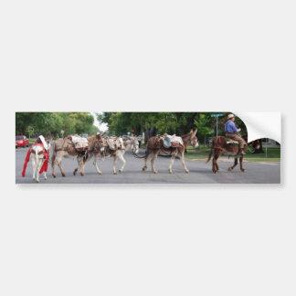 Pack donkeys bumper sticker