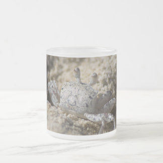 Pack glass frozen crab 10 oz frosted glass coffee mug