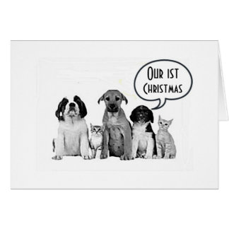 "PACK OF DOGS ""MERRY 1st CHRISTMAS to US"" Card"
