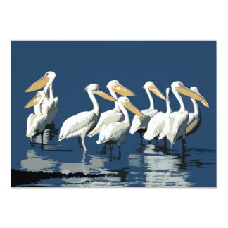 Pack of Pelicans in the Water Card