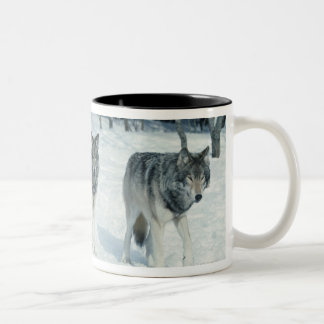 Pack of wolves at edge of snowy forest coffee mugs