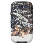 Pack of wolves in winter galaxy s3 covers