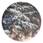 Pack of wolves in winter party plates