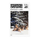 Pack of wolves in winter stamps