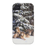 Pack of wolves in winter vibe iPhone 4 case